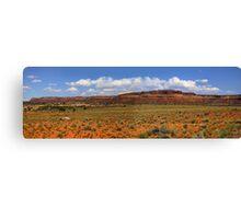Desert landscape in the Arizona Canvas Print