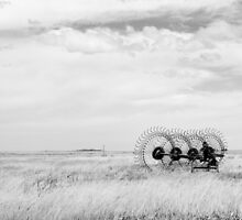 Hay rake -  {Black & White} (Farm equipment) Location: Free state, South Africa by Qnita