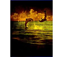 Dolphins jumping Photographic Print