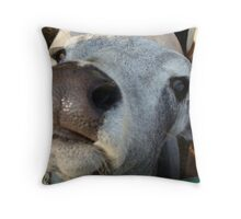 A Face Only A Mother Could Love Throw Pillow