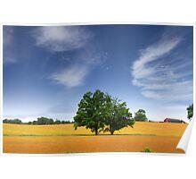 Scenic Landscape In Wheat Fields Poster