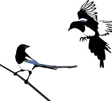 Magpies by Robert Bruce Anderson