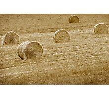 Wheat Bales Photographic Print