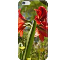 flower - flor iPhone Case/Skin
