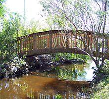 The Bridge by tapiona