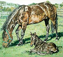 Horse and Foal portrait by artist Debbie Boyle db artstudio by Deborah Boyle