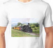 Durango And Silverton Engineer Checks The Track Unisex T-Shirt