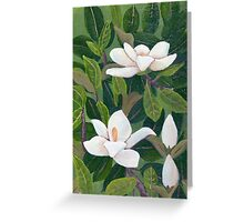 Magnolia II ~ Floral ~ Oil Painting Greeting Card