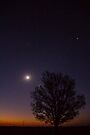 Southern stars during sunset - 001 by Qnita