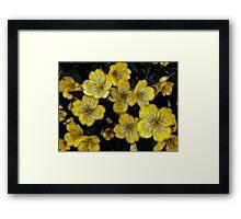 Golden Twinkle Framed Print