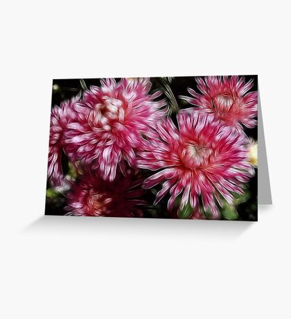 Flower Feathers Greeting Card