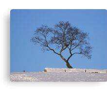 perfect blue sky Canvas Print