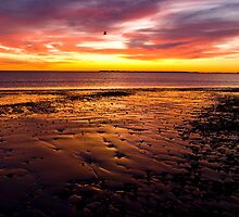 Fiery Sunrise, Revere Beach and Boston View by Paul Marotta