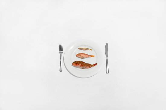 Three Course Meal by Daniel  Angeles