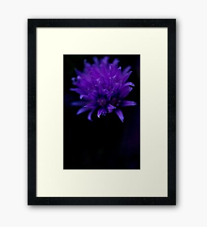 Purple-Blue Framed Print