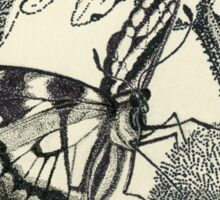Dotted Butterfly Sticker
