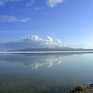 A reflection from Antelope Island by Deborah  Allen