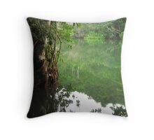 Rio Dulce Reflections Throw Pillow