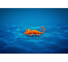 Gecko Photographic Print