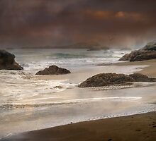 Stormy Moods by Diane Schuster