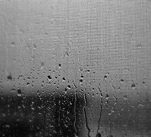 Quiet Rain by Dragomir Vukovic