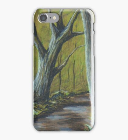 Jones Creek in pastel and graphite iPhone Case/Skin
