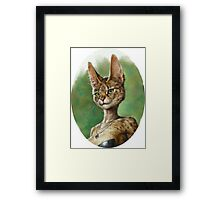 Fluffy Pretty Cat Framed Print