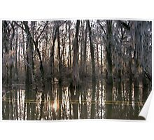 Late Afternoon at Caddo Lake Poster