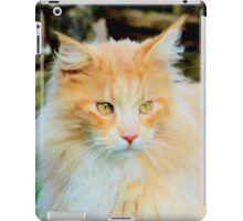 Soft as a pussy cat iPad Case/Skin