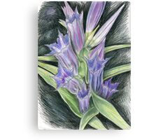 Purple, and Black Visions Canvas Print