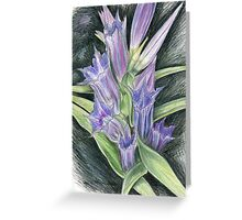 Purple, and Black Visions Greeting Card