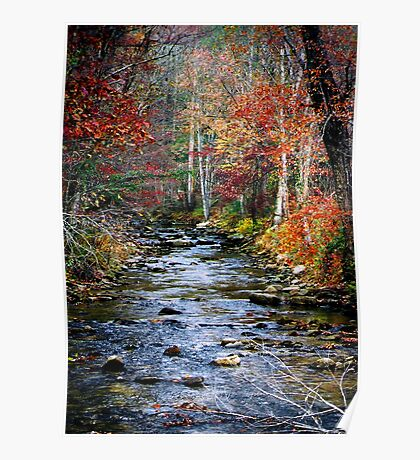 Little Eastatoe River Poster