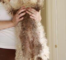 Grubby Muddy Belly! by lisajns