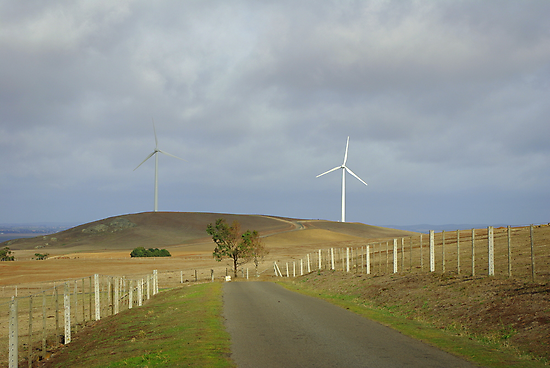 Farming the wind by Kerry  Hill