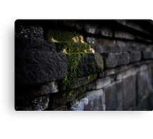 Stonework at Borobudur Canvas Print
