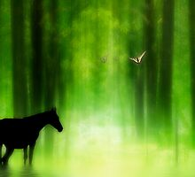 Mystical Woodland by Diane Schuster