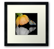 Reflecting Our True Colors Back To The World Framed Print