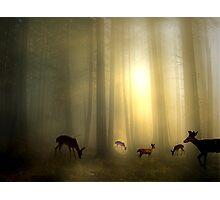 The Magic Of Sunrise Photographic Print