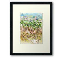 North Leura Framed Print