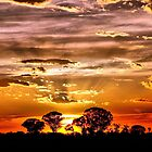 Golden Rays by Clive