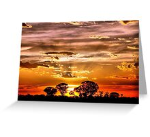 Golden Rays Greeting Card