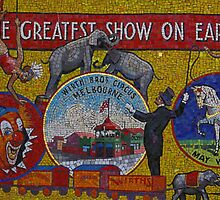 Runing Away To Join, Er, Photograph The Circus by David McMahon