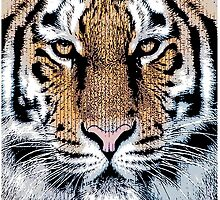 Tiger Portrait in Graphic Press Style by Garaga