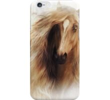 Sundance Horse Portrait iPhone Case/Skin