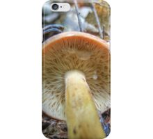 """Lactarius from the underside"" iPhone Case/Skin"