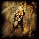 Corn the pirate ! by Michel Raj