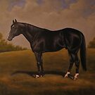 Quarterhorse by Birgit Schnapp