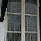 Chainmail curtains, Cumbria by BronReid