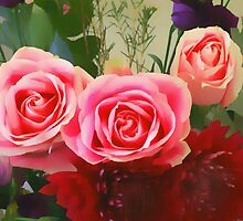 pink roses by OlaG