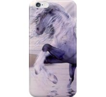 Blue Water Horse iPhone Case/Skin
